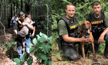 Police bloodhound sniffs out missing 3-year-old with autism in less than 30 minutes