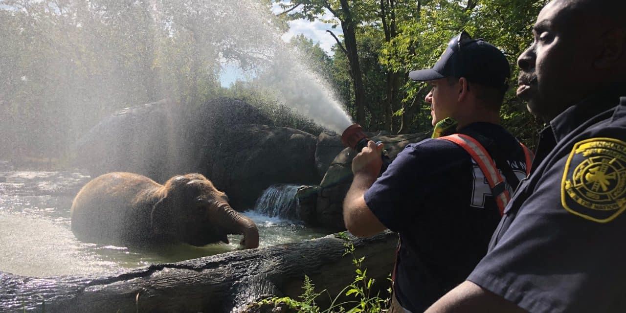 Cincinnati Zoo celebrate First Responders Week